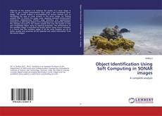 Copertina di Object Identification Using Soft Computing in SONAR images