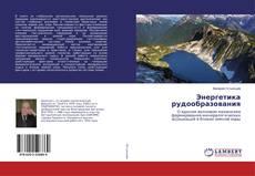 Buchcover von Энергетика рудообразования
