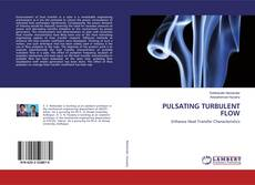 Couverture de PULSATING TURBULENT FLOW