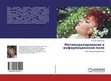 Bookcover of Метамоделирование в информационном поле