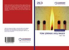 TÜRK ŞİİRİNDE ATEŞ İMGESİ kitap kapağı