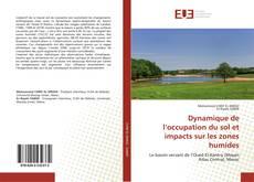 Portada del libro de Dynamique de l'occupation du sol et impacts sur les zones humides