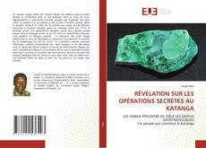 Bookcover of RÉVÉLATION SUR LES OPÉRATIONS SECRÈTES AU KATANGA
