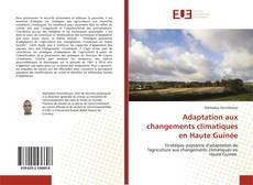Adaptation aux changements climatiques en Haute Guinée kitap kapağı