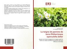 Обложка La teigne de pomme de terre Phthorimaea operculella Zeller