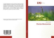 Borítókép a  Plantes Marocaines - hoz
