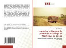 Le manioc et l'igname du plateau de Nsah-Ngo en République du Congo kitap kapağı