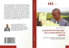La province du Kwango : de la vulnérabilité à la viabilité的封面