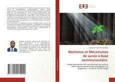 Borítókép a  Résilience et Mécanismes de survie à base communautaire - hoz