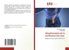Capa do livro de Morphométrie de la confluence ilio-cave