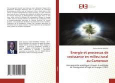 Borítókép a  Energie et processus de croissance en milieu rural au Cameroun - hoz