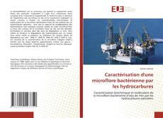 Borítókép a  Caractérisation d'une microflore bactérienne par les hydrocarbures - hoz