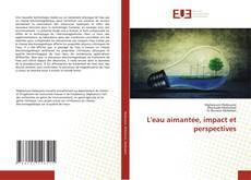 L'eau aimantée, impact et perspectives kitap kapağı