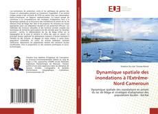 Capa do livro de Dynamique spatiale des inondations à l'Extrême-Nord Cameroun