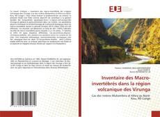 Borítókép a  Inventaire des Macro-invertébrés dans la région volcanique des Virunga - hoz