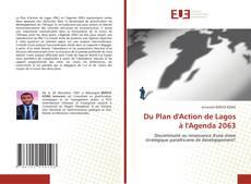 Bookcover of Du Plan d'Action de Lagos à l'Agenda 2063