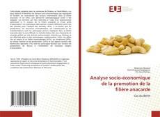 Copertina di Analyse socio-économique de la promotion de la filière anacarde