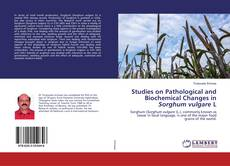 Couverture de Studies on Pathological and Biochemical Changes in Sorghum vulgare L