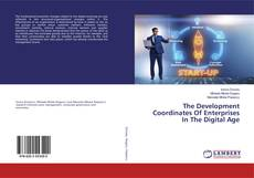 Bookcover of The Development Coordinates Of Enterprises In The Digital Age