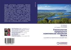 Bookcover of Геоэкология природных комплексов низовьев Волги
