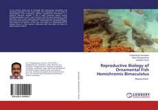Bookcover of Reproductive Biology of Ornamental Fish Hemichromis Bimaculatus