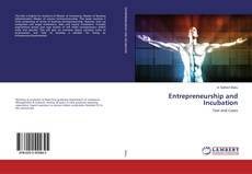 Entrepreneurship and Incubation的封面