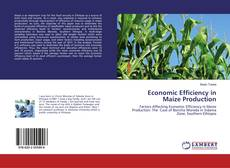 Capa do livro de Economic Efficiency in Maize Production