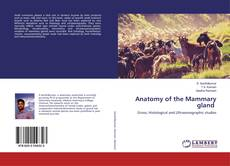 Bookcover of Anatomy of the Mammary gland