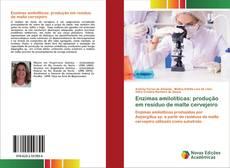 Обложка Enzimas amilolíticas: produção em resíduo de malte cervejeiro