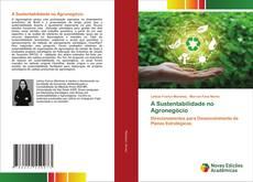 Buchcover von A Sustentabilidade no Agronegócio