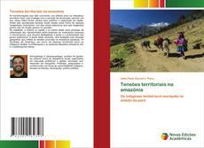 Capa do livro de Tensões territoriais na amazônia