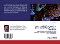 Couverture de Health and Safety Issues in Small Scale Manufacturing Industries