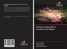 Bookcover of Calcolo matematico e numerico con Maple