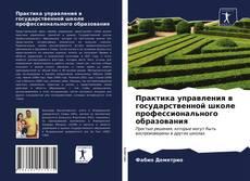 Практика управления в государственной школе профессионального образования kitap kapağı