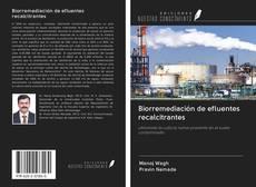 Copertina di Biorremediación de efluentes recalcitrantes