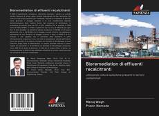 Bookcover of Bioremediation di effluenti recalcitranti