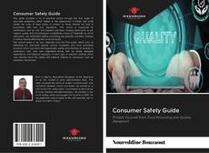 Bookcover of Consumer Safety Guide