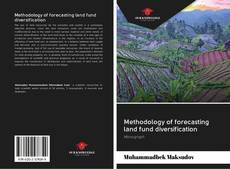 Bookcover of Methodology of forecasting land fund diversification