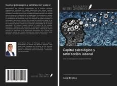 Capital psicológico y satisfacción laboral kitap kapağı