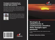 Buchcover von Strategie di adattamento al cambiamento climatico delle famiglie agro-pastorali
