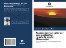 Portada del libro de Anpassungsstrategien der agro-pastoralen Haushalte an den Klimawandel