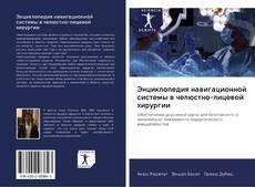 Copertina di Энциклопедия навигационной системы в челюстно-лицевой хирургии
