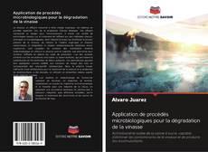 Borítókép a  Application de procédés microbiologiques pour la dégradation de la vinasse - hoz