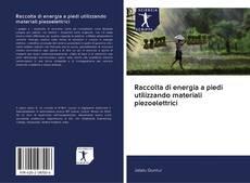 Bookcover of Raccolta di energia a piedi utilizzando materiali piezoelettrici