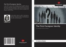 Bookcover of The Third Foreigner Identity