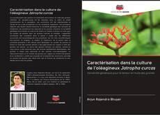 Copertina di Caractérisation dans la culture de l'oléagineux Jatropha curcas