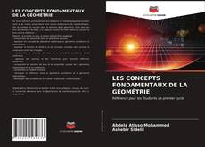 LES CONCEPTS FONDAMENTAUX DE LA GÉOMÉTRIE kitap kapağı