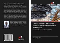 Bookcover of Consapevolezza politica ed esercizio della cittadinanza in Mozambico