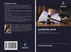 Juridische serie的封面