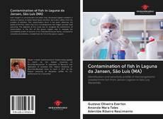 Bookcover of Contamination of fish in Laguna da Jansen, São Luís (MA)